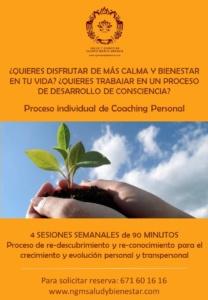 Proceso individual Coaching Personal. NGM Salud y Bienestar Nuria Gomar Mirallave. Torrente y Valencia Ciudad.